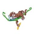 Image of sleeping monkey on the vine vector