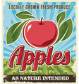 Retro vintage apple crate label vector
