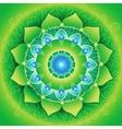 Circle background bright green mandlala of vector
