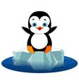 Penguin on ice vector