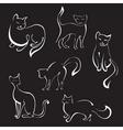 Cat sketches vector