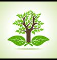 Tree on the leaf vector