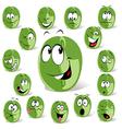Green coffee bean vector