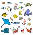 Aquatic animals vector