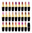 Set lipstick different colors object on white vector