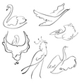 Birds sketches vector