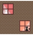 A cats in house windows vector