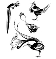 Art birds set vector