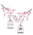 Bird love cage vector