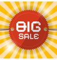 Retro big sale template vector