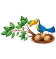 A blue bird above the branch of a tree vector