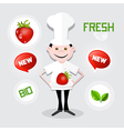 Chef - cook with strawberry on plate vector