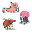 Human internal organs characters 2 vector