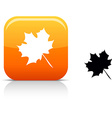 Autumn icon vector