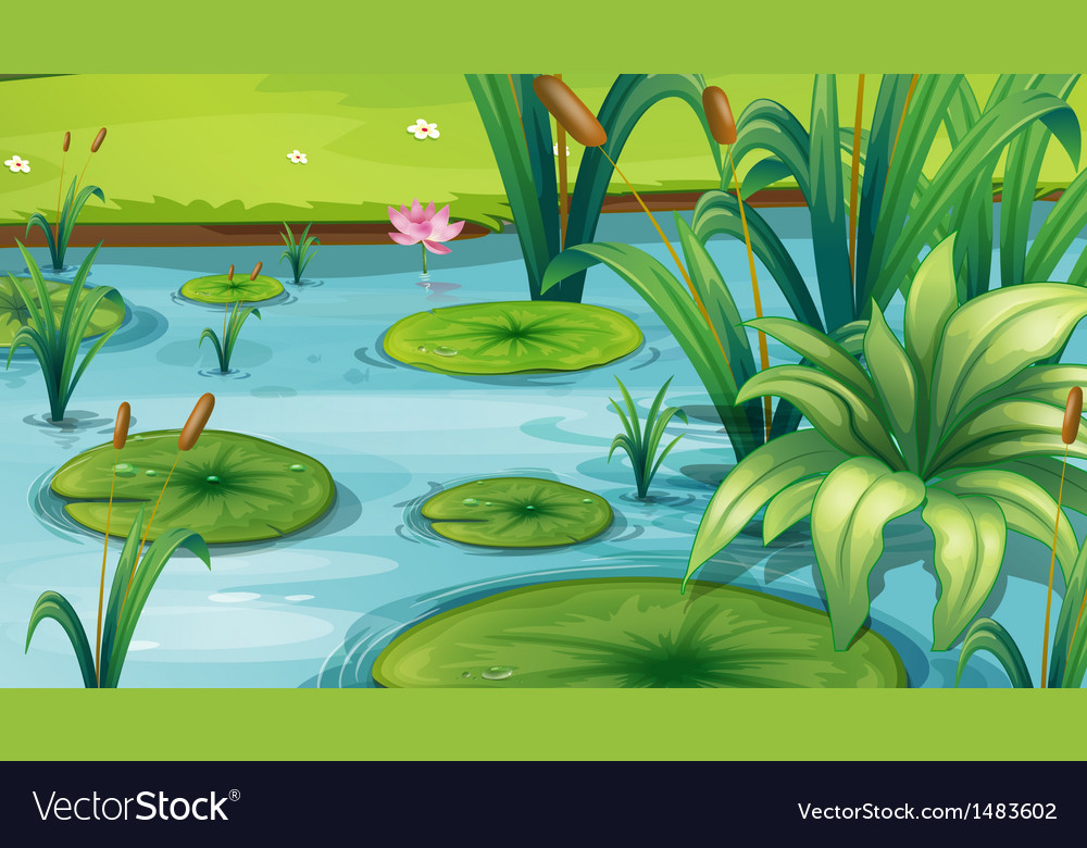 A pond with many plants vector | Price: 1 Credit (USD $1)