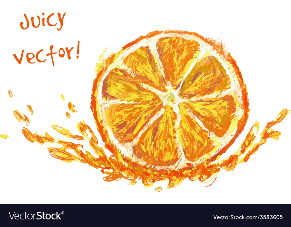 Drawing slice of orange vector | Price: 1 Credit (USD $1)