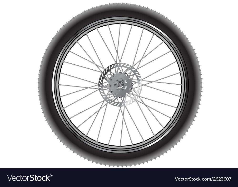 Mountain bike wheel vector | Price: 1 Credit (USD $1)