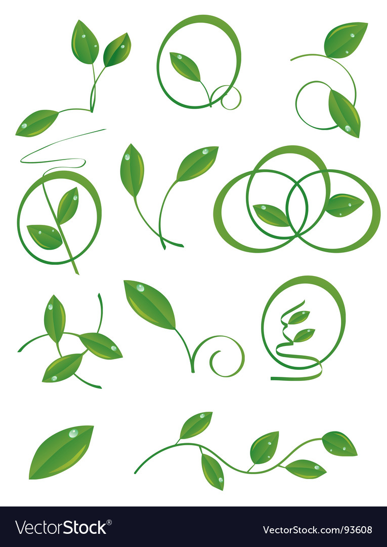 A set of green leaves vector | Price: 1 Credit (USD $1)