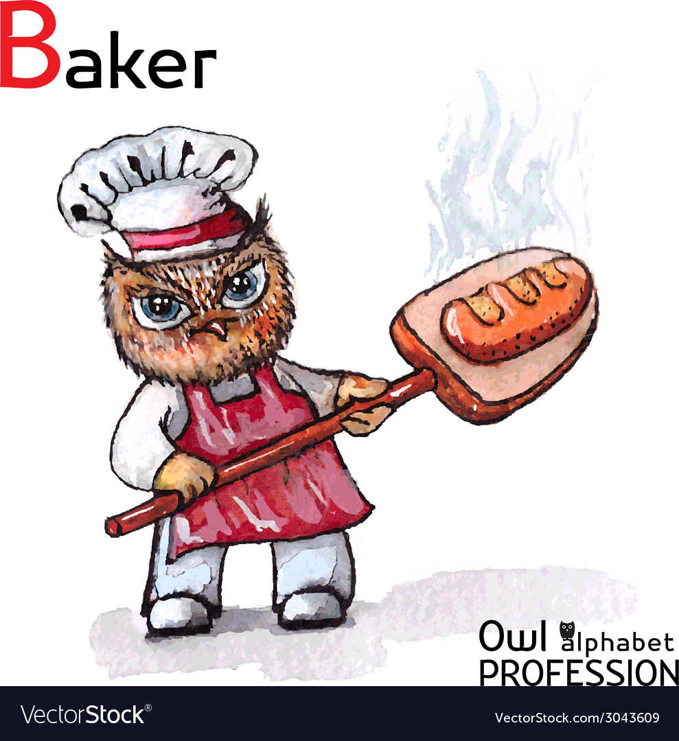 Alphabet professions owl baker character on a vector | Price: 1 Credit (USD $1)
