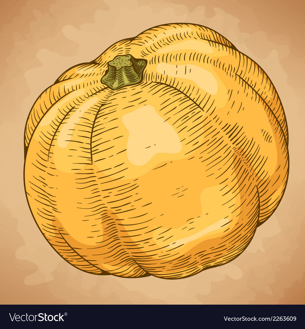 Engraving big pumpkin retro vector | Price: 1 Credit (USD $1)