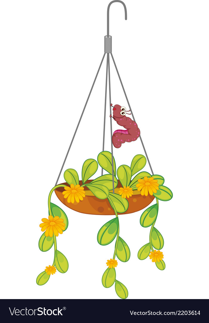 A hanging plant with a caterpillar vector | Price: 1 Credit (USD $1)