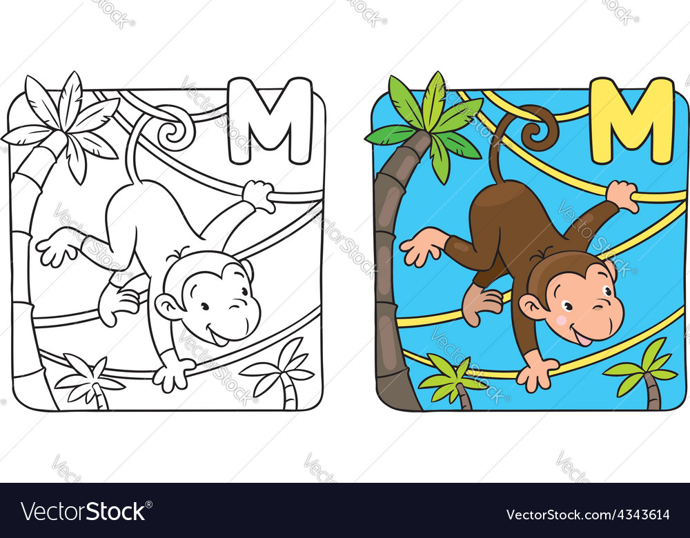 Coloring book of funny monkey on lians alphabet m vector | Price: 1 Credit (USD $1)