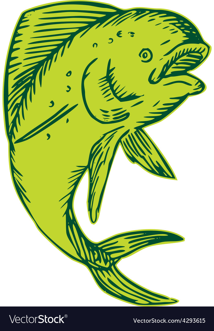 Dolphin fish jumping etching vector | Price: 1 Credit (USD $1)