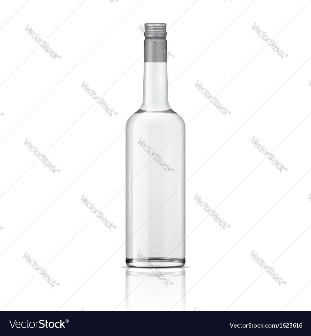 Glass vodka bottle with screw cap vector | Price: 1 Credit (USD $1)