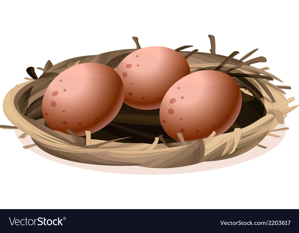 A nest with three eggs vector | Price: 1 Credit (USD $1)
