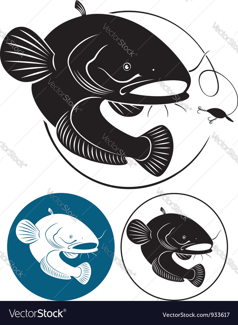 Catfish vector