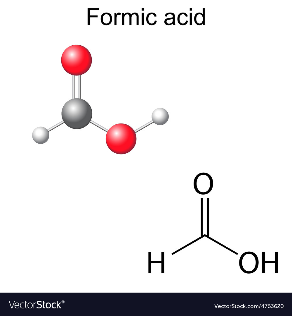 Chemical formula and model of formic acid vector | Price: 1 Credit (USD $1)