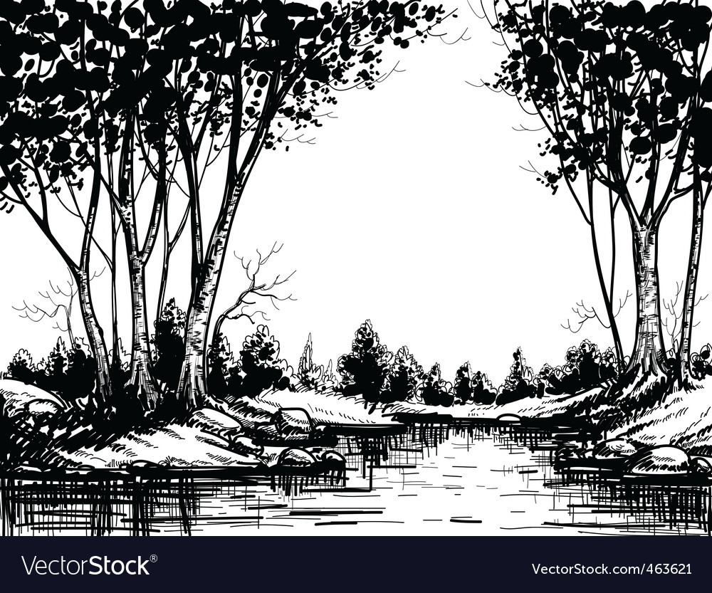 Lake in the birch forest vector | Price: 1 Credit (USD $1)