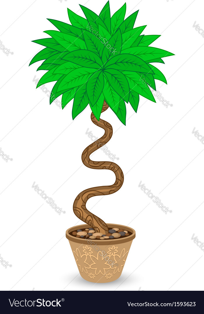Bent tree in flowerpot vector | Price: 1 Credit (USD $1)