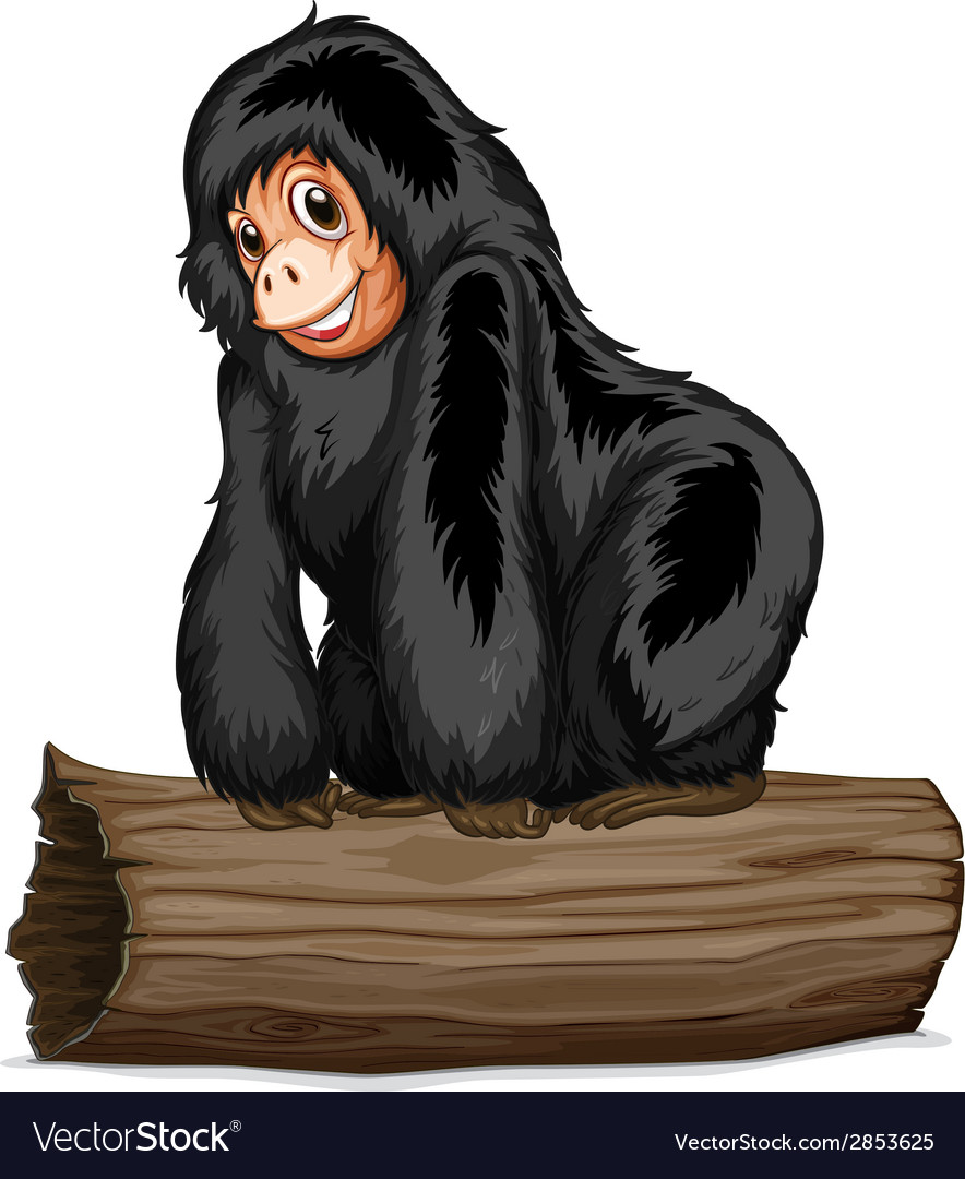 Chimpanzee vector | Price: 1 Credit (USD $1)