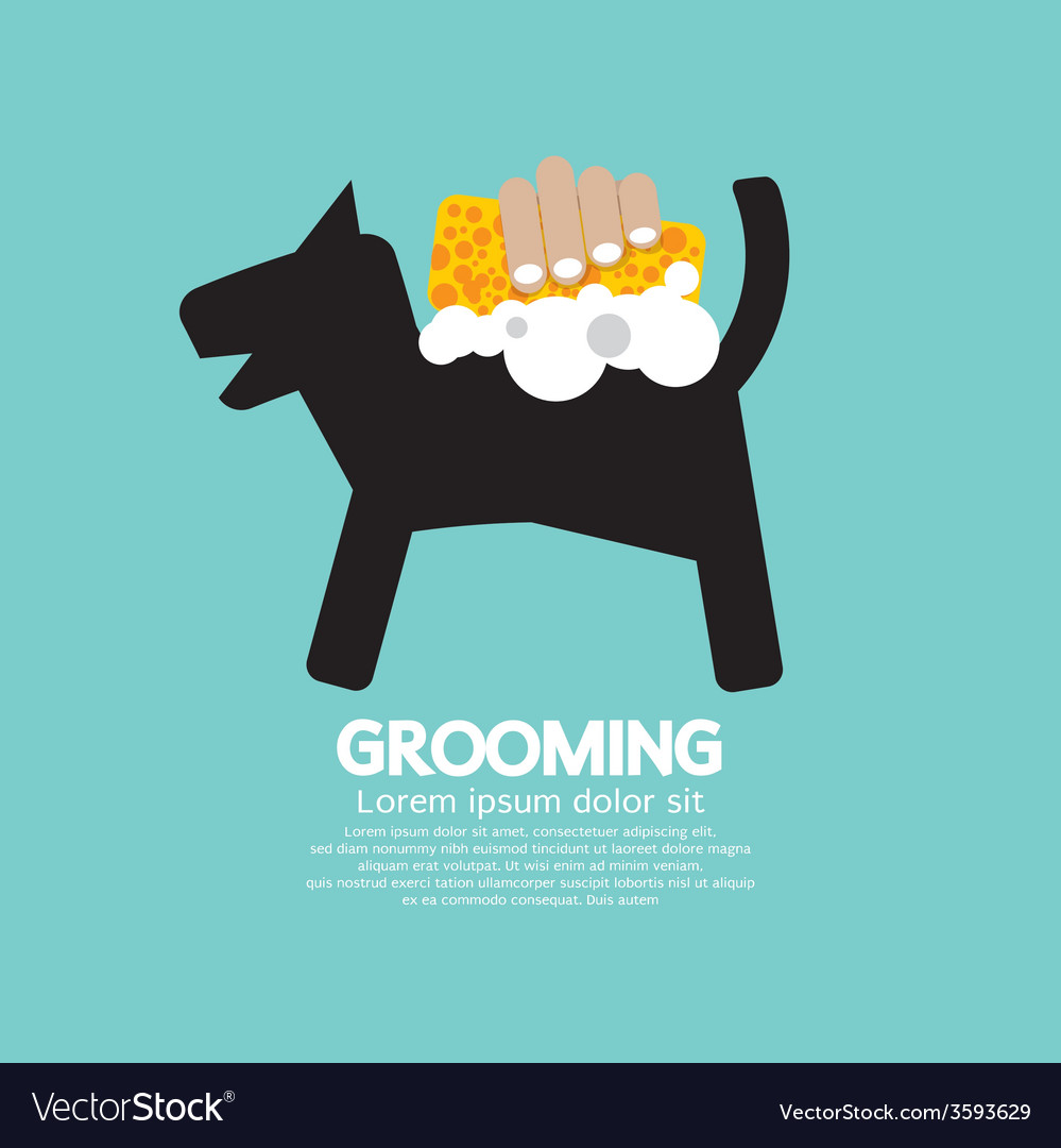 Dog shower with soap and sponge pet grooming vector | Price: 1 Credit (USD $1)