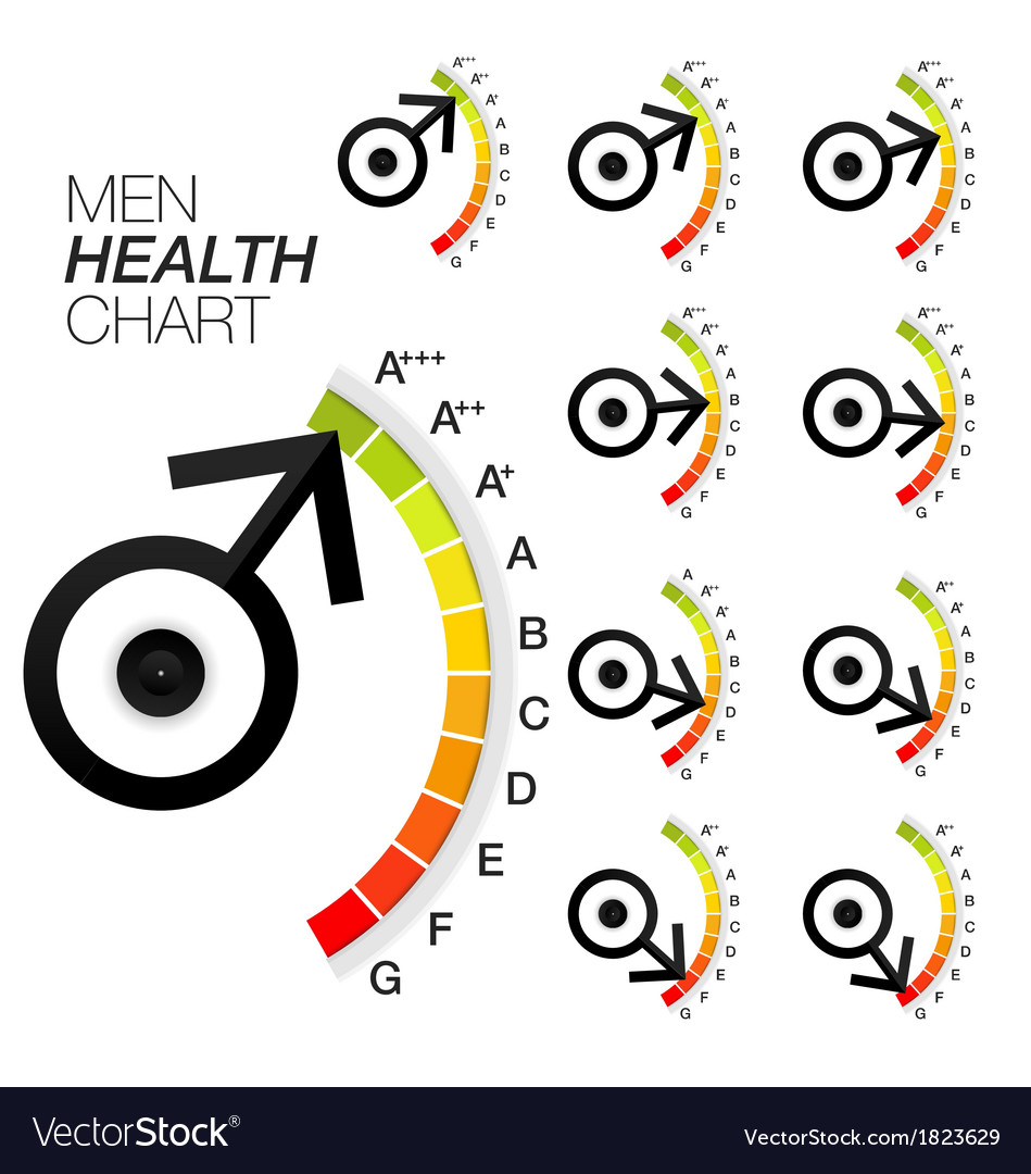 Men sexual health chart or gauge vector | Price: 1 Credit (USD $1)