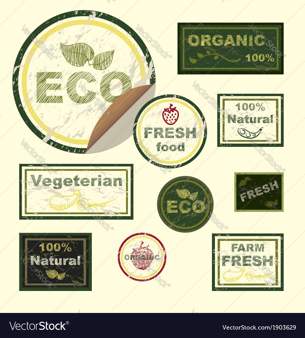 Organic food signs vector | Price: 1 Credit (USD $1)