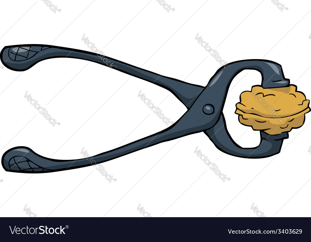 Pliers with walnuts vector