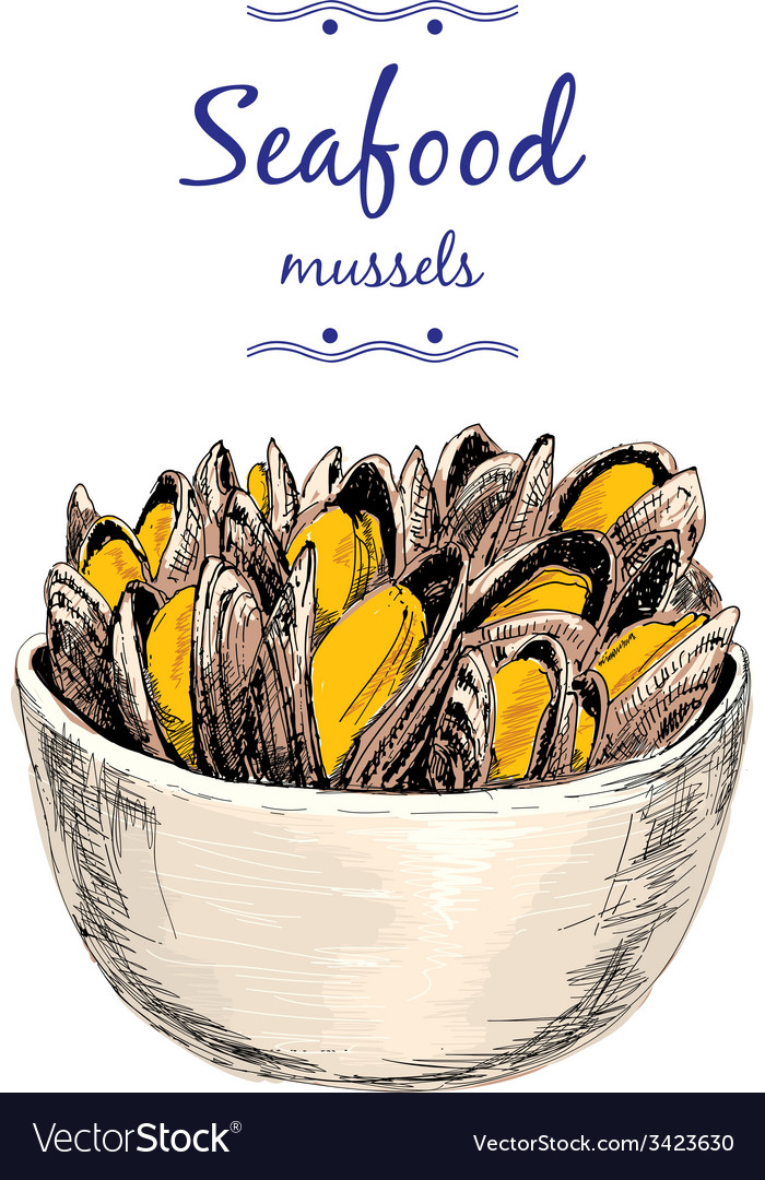 Seafood mussels vector | Price: 1 Credit (USD $1)
