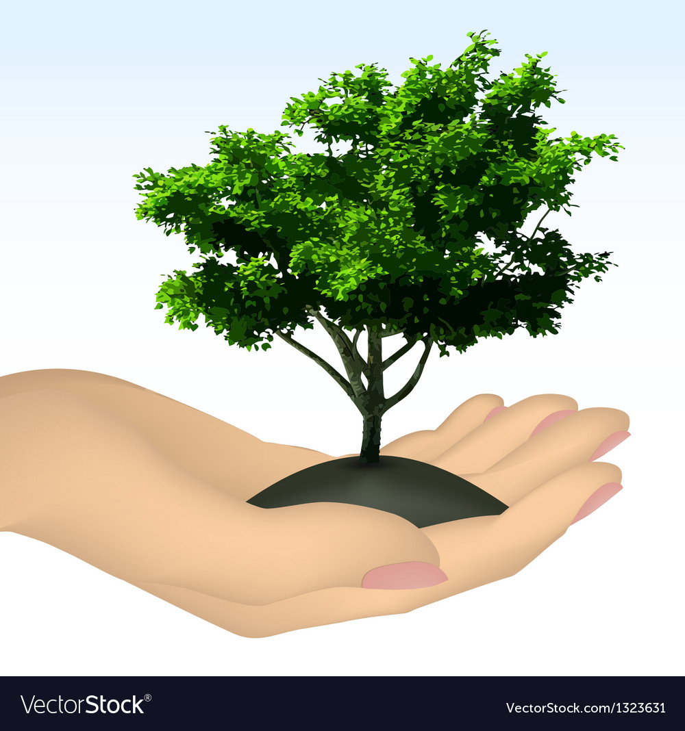 Human hand with tree vector | Price: 1 Credit (USD $1)