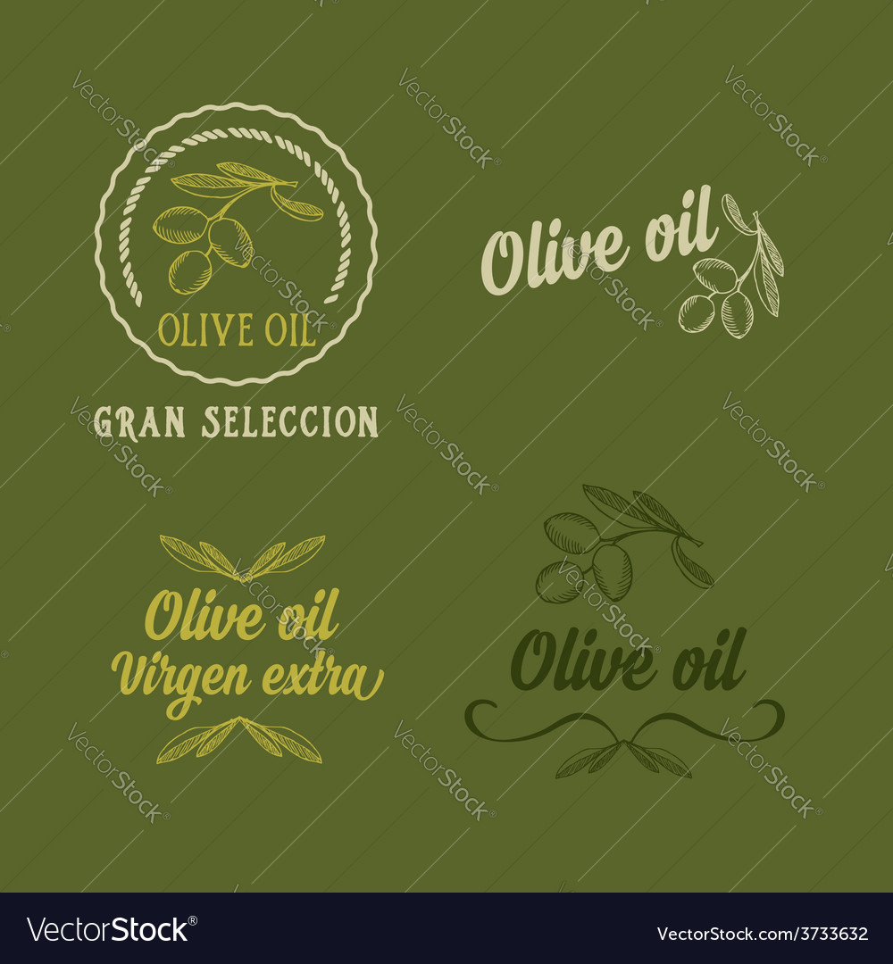 Olive oil design concept great selection vector | Price: 1 Credit (USD $1)
