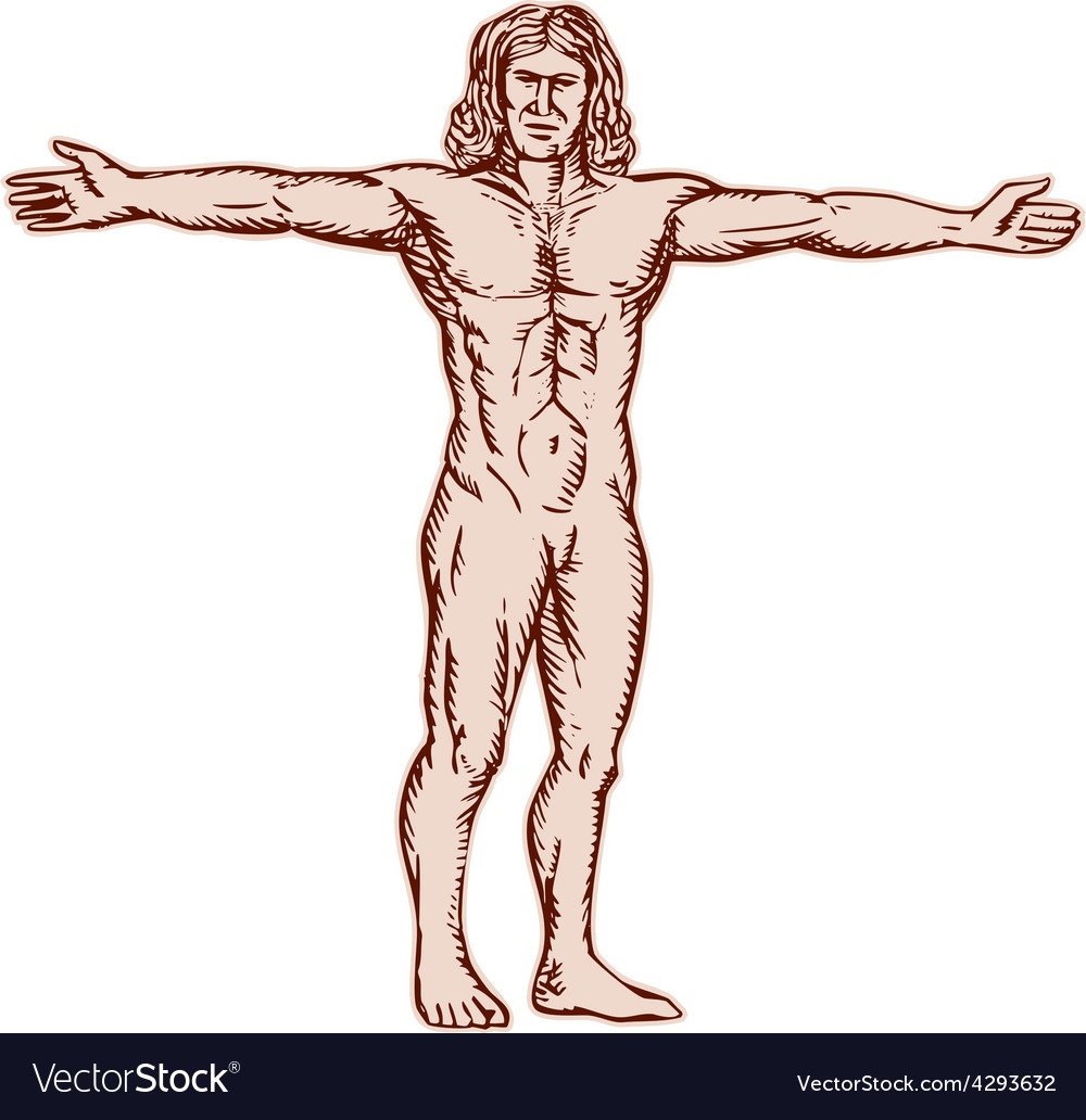 Vitruvian man arms spread front etching vector | Price: 1 Credit (USD $1)