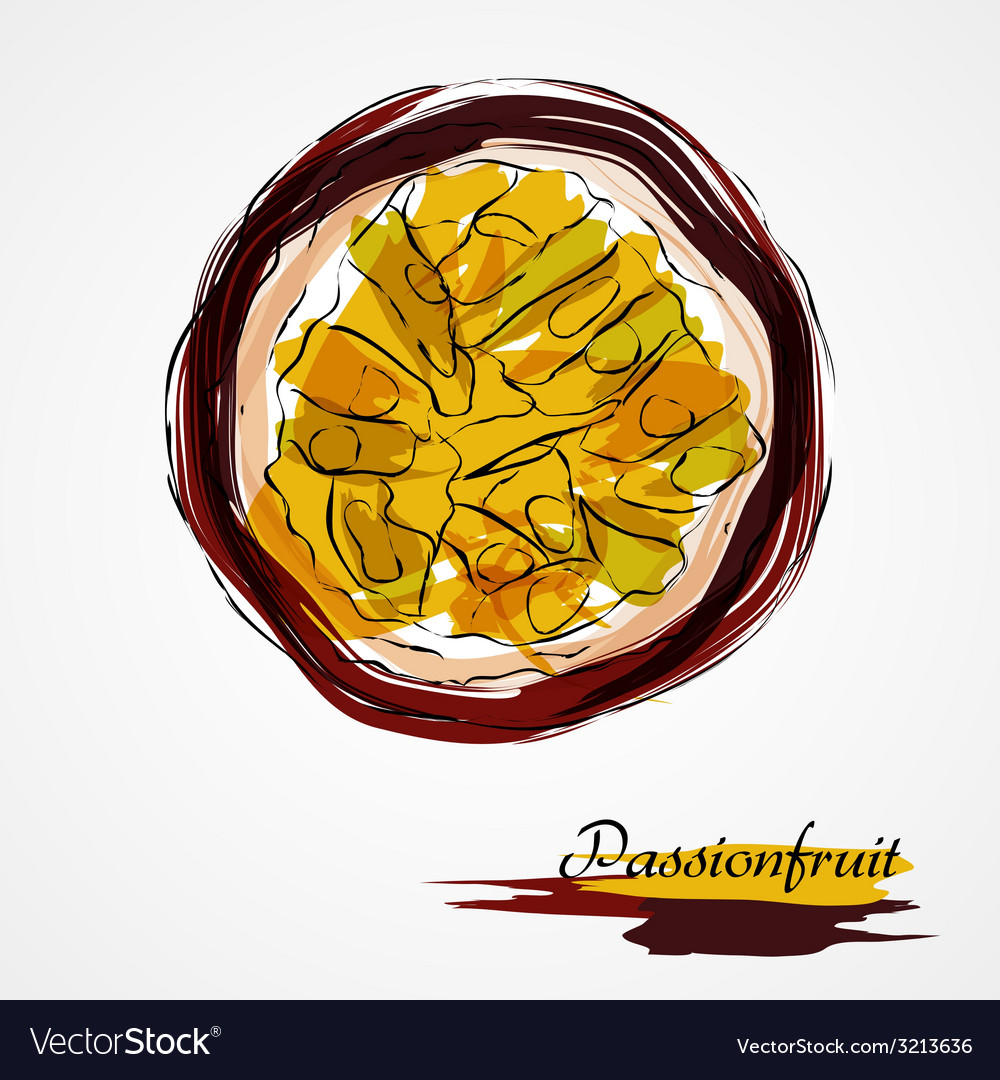 Passionfruit vector | Price: 1 Credit (USD $1)