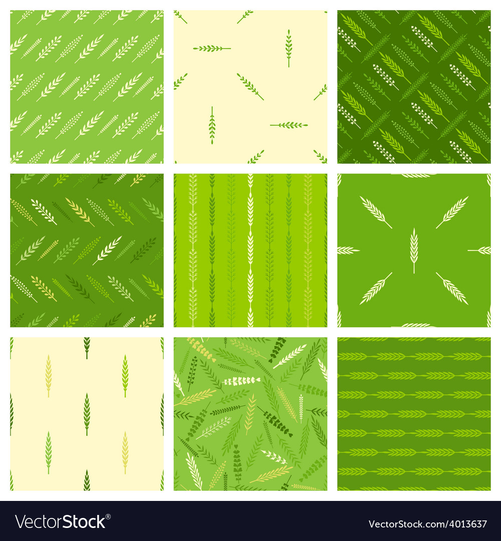 Set of seamless nature patterns vector | Price: 1 Credit (USD $1)