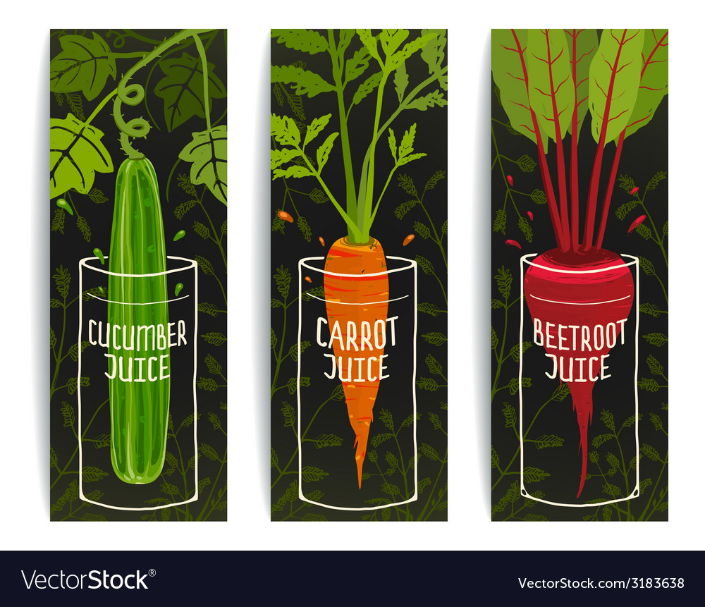 Dieting carrot cucumber beet juices hand drawn vector | Price: 1 Credit (USD $1)