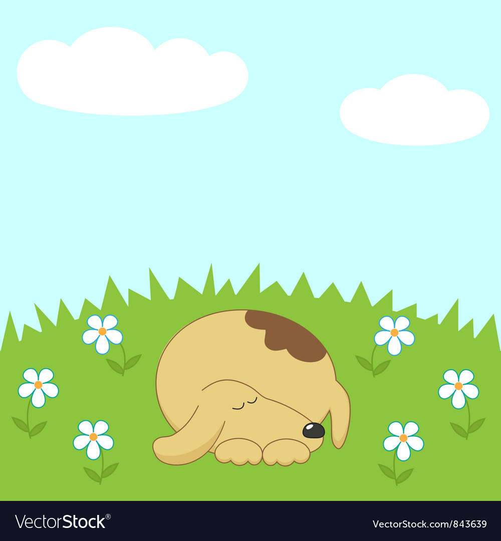 Dog sleeping on the meadow vector