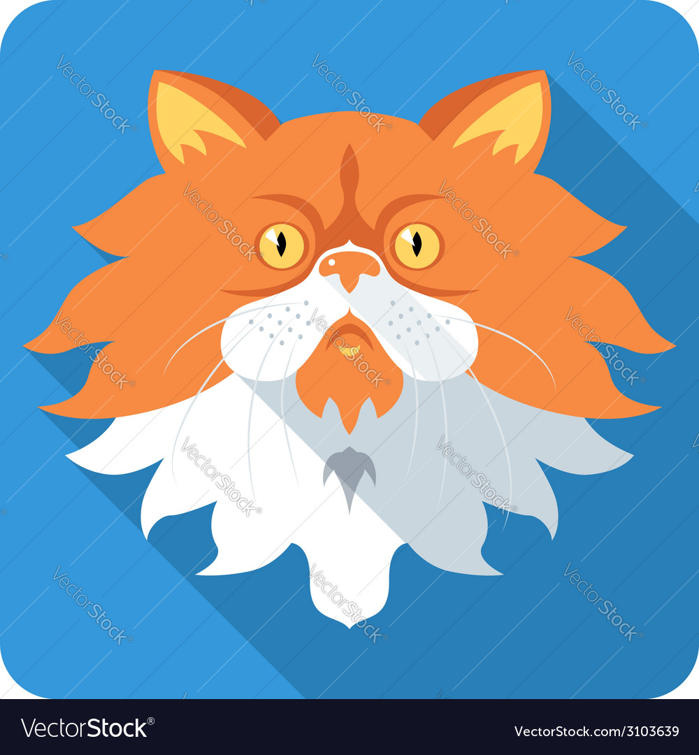 Fluffy persian cat icon flat design vector | Price: 1 Credit (USD $1)
