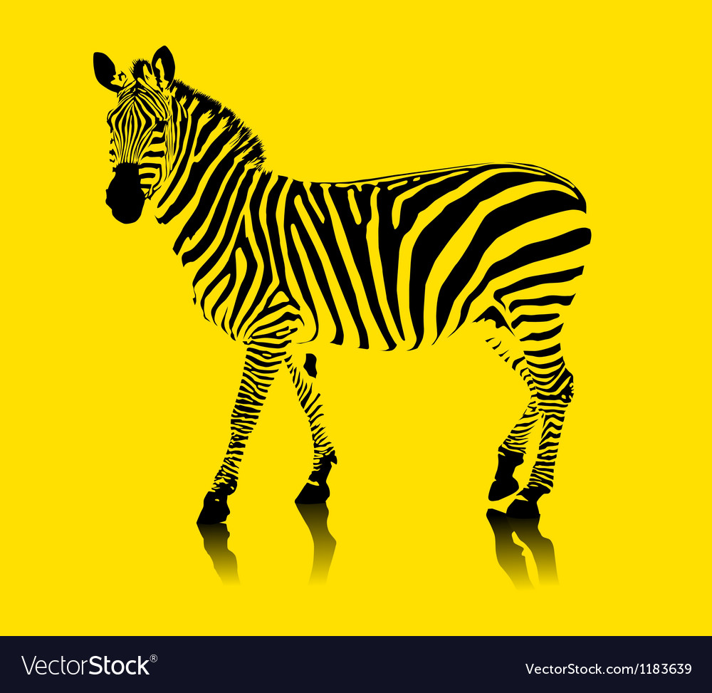 Yellow zebra vector | Price: 1 Credit (USD $1)