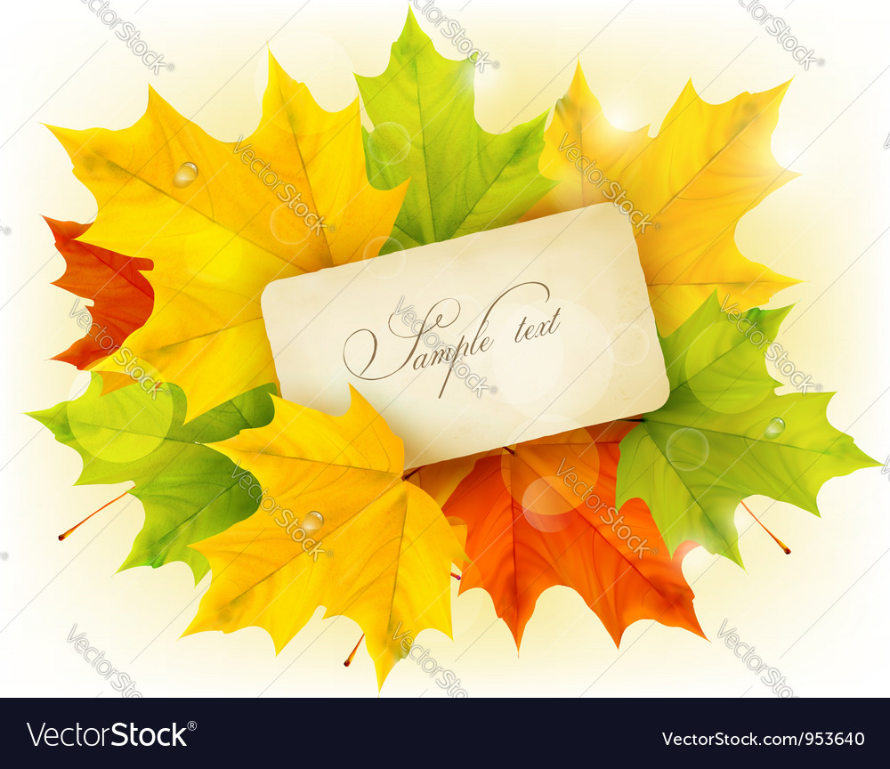 Card with autumn colorful leaves vector | Price: 1 Credit (USD $1)