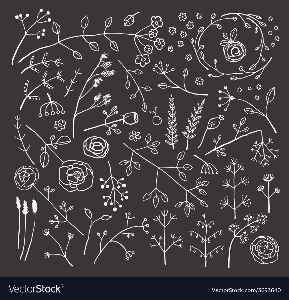 Field flowers and plants decoration collection on vector | Price: 1 Credit (USD $1)